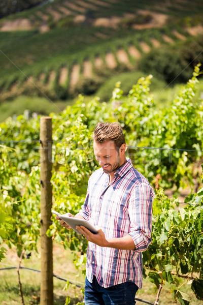 Mosolyog férfi telefon tabletta szőlőskert áll Stock fotó © wavebreak_media