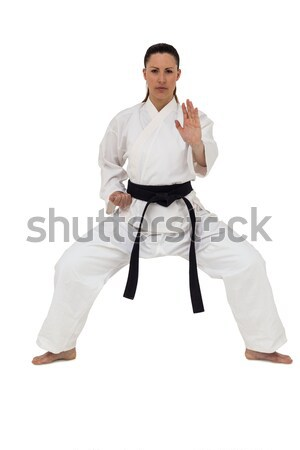 Vrouwelijke vechter karate houding witte Stockfoto © wavebreak_media
