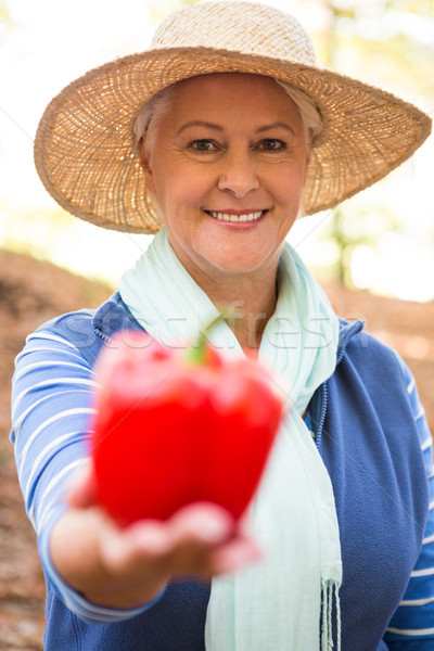 Portré boldog kertész tart piros paprika Stock fotó © wavebreak_media