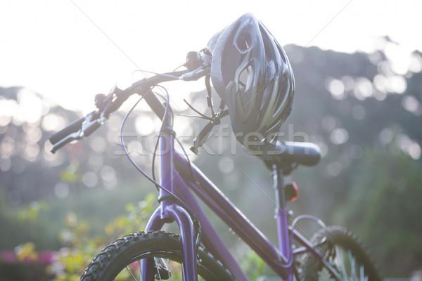 Bicycle parked in park Stock photo © wavebreak_media