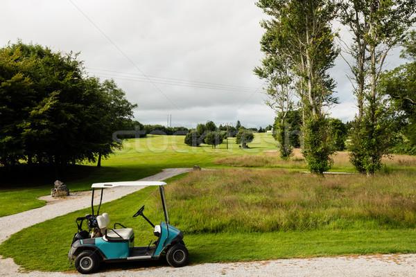 гольф корзины гольф пусто трава интернет Сток-фото © wavebreak_media