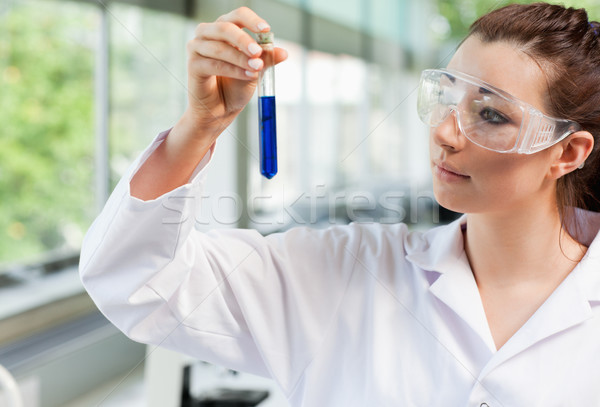 Science student looking at a test tube in a laboratory Stock photo © wavebreak_media