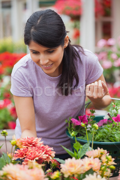 Stock photo: Woman shopping for plants in garden center