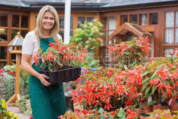 Kadın çalışma bahçe tepsi Stok fotoğraf © wavebreak_media