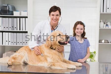 Gülen veteriner köpek tıbbi ofis Stok fotoğraf © wavebreak_media