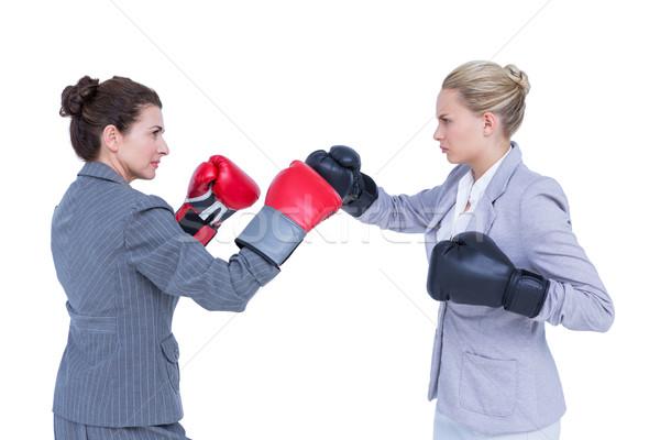 üzletasszonyok boxkesztyűk harcol fehér fal nő Stock fotó © wavebreak_media