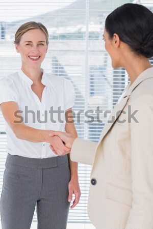 Бизнес-партнеры рукопожатием улыбаясь счастливым рукопожатие деловые люди Сток-фото © wavebreak_media