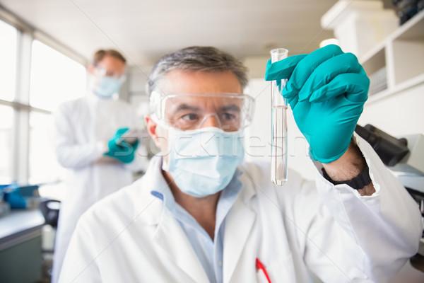Csapat tudósok együtt dolgozni laboratórium iskola orvosi Stock fotó © wavebreak_media
