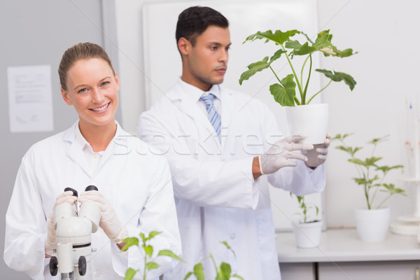 Scientist smiling at camera while colleague looking at plant  Stock photo © wavebreak_media