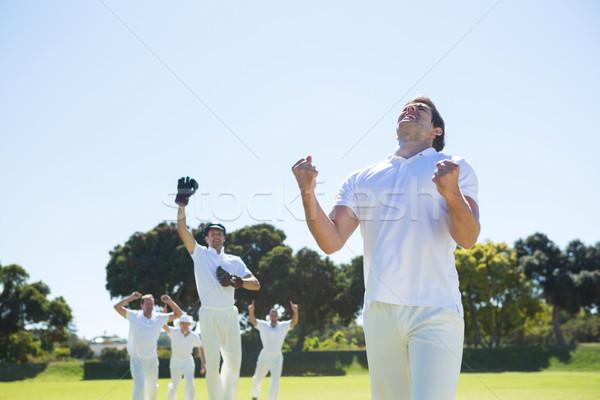 счастливым крикет команда победу Постоянный Сток-фото © wavebreak_media
