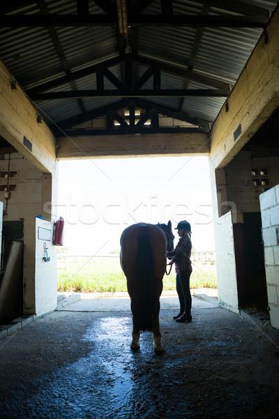 Teenage girl standing with horse Stock photo © wavebreak_media