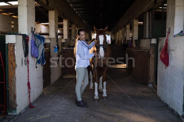 Femenino veterinario examinar caballo estable vista lateral Foto stock © wavebreak_media
