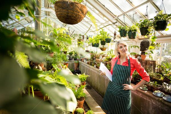 Női kertész néz növények akasztás üvegház Stock fotó © wavebreak_media