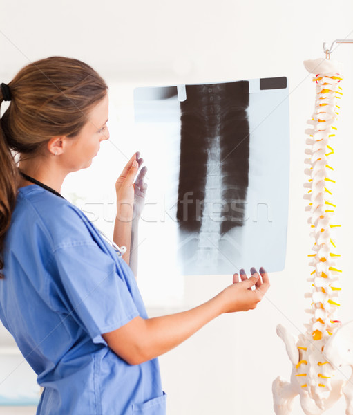 Stock photo: Gorgeous smiling doctor with a stethoscope and a x-ray in the surgery