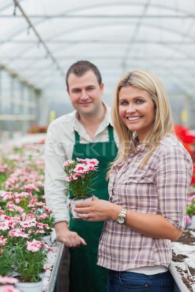 Mujer flor invernadero empleado flores Foto stock © wavebreak_media