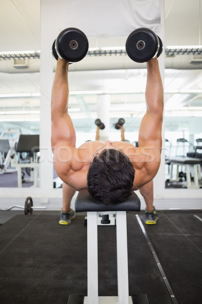 Photo stock: Musculaire · homme · haltères · gymnase · torse · nu