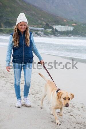 Dziewczyna gry szczeniak biały psa szczęśliwy Zdjęcia stock © wavebreak_media