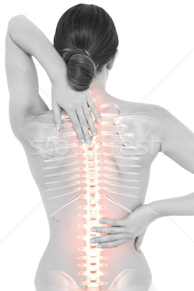 Kręgosłup kobieta digital composite nude ciało Zdjęcia stock © wavebreak_media