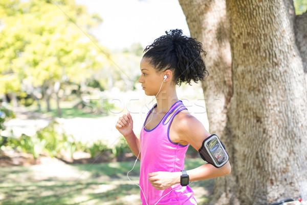Női kocogó zenét hallgat jogging park napos idő Stock fotó © wavebreak_media