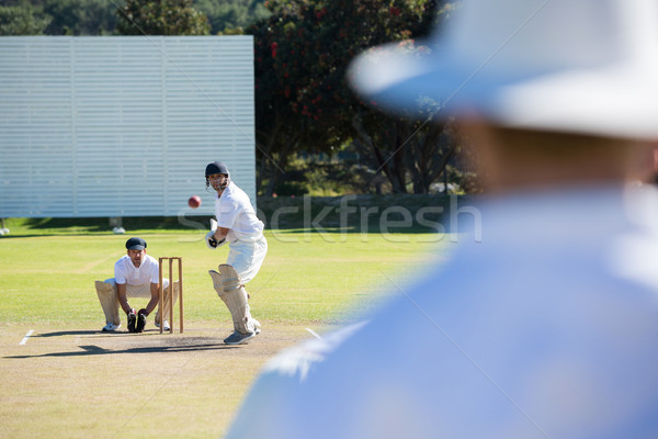 背面図 審判 立って クリケット 一致 フィールド ストックフォト © wavebreak_media