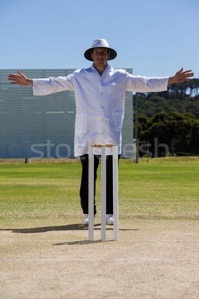 крикет широкий мяча матча Сток-фото © wavebreak_media