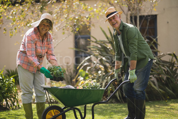Portrait of cheerful senior couple carrying plants in wheel borrow Stock photo © wavebreak_media
