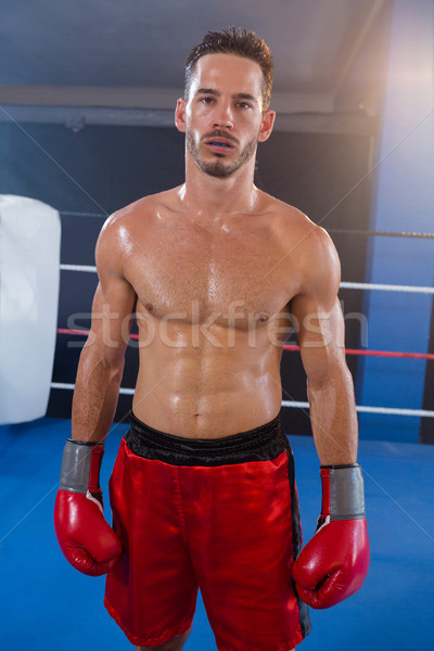 Retrato masculino boxeador vermelho luvas Foto stock © wavebreak_media