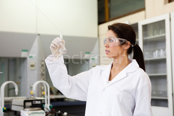 Chemist looking at a Erlenmeyer flask in a laboratory Stock photo © wavebreak_media