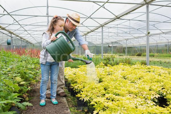 Tuinman kleindochter planten broeikas meisje Stockfoto © wavebreak_media