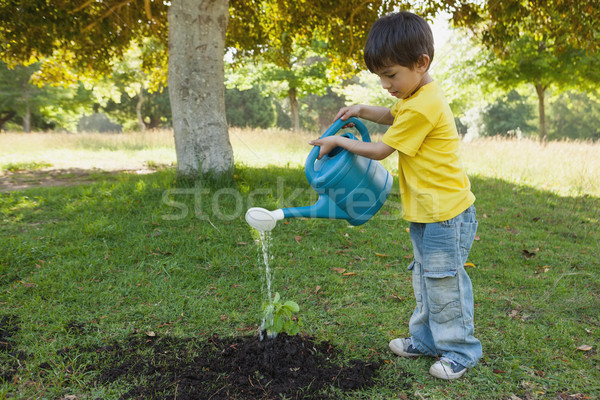 Jonge plant park zijaanzicht Stockfoto © wavebreak_media