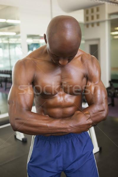 Sem camisa muscular homem músculos jovem ginásio Foto stock © wavebreak_media