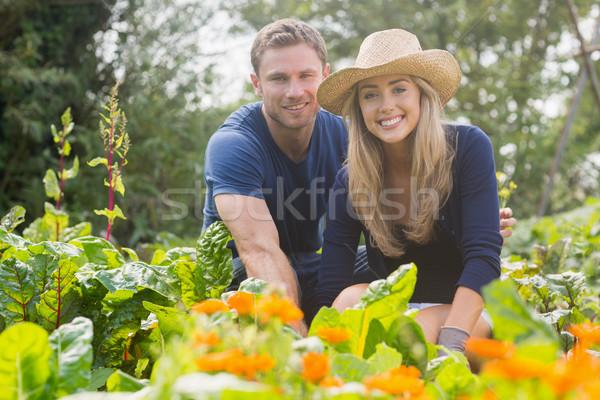 Sevimli çift bahçıvanlık ev bahçe Stok fotoğraf © wavebreak_media