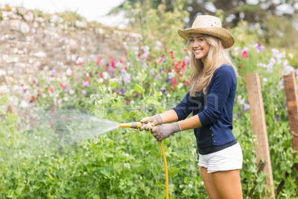 Cute blonde gardening on sunny day Stock photo © wavebreak_media