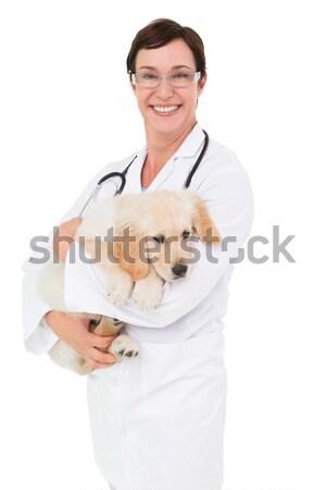Mosolyog állatorvos aranyos kutya karok fehér Stock fotó © wavebreak_media