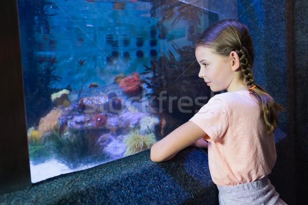 Sevimli kız bakıyor balık tank akvaryum Stok fotoğraf © wavebreak_media