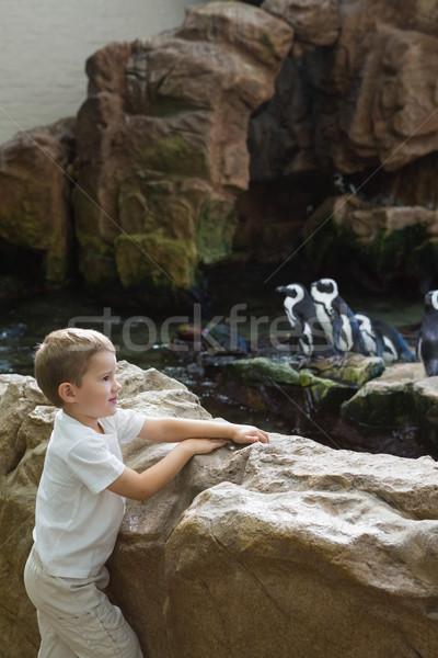 少年 見える 子 岩 楽しい ストックフォト © wavebreak_media