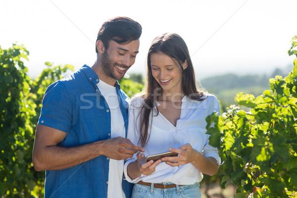 Happy young couple using mobile phone at vineyard Stock photo © wavebreak_media