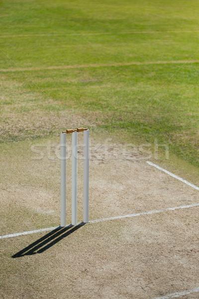 High angle view of stumps on cricket field Stock photo © wavebreak_media