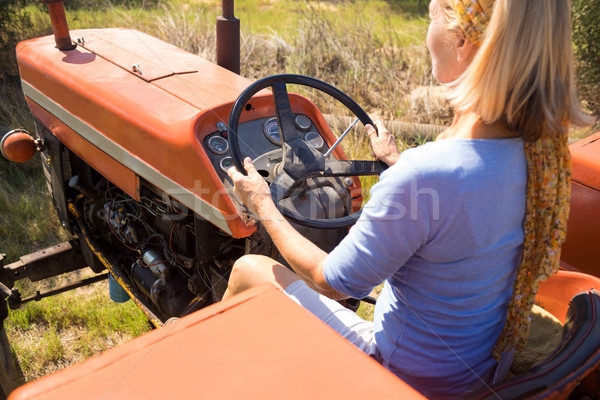 Rear view of woman driving tractor in olive farm Stock photo © wavebreak_media