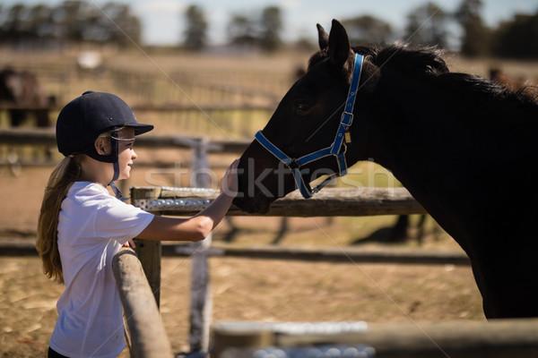 Girl stroking a brown horse in the ranch Stock photo © wavebreak_media