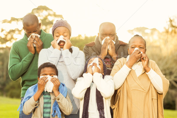 Extended family blowing their nose Stock photo © wavebreak_media
