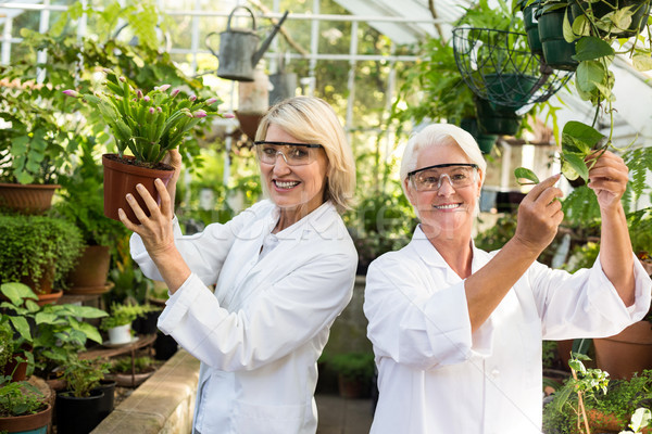 Female coworkers smiling while examining potted plants Stock photo © wavebreak_media