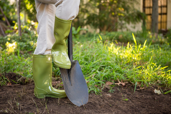 Low section of female gardener with shovel at garden Stock photo © wavebreak_media