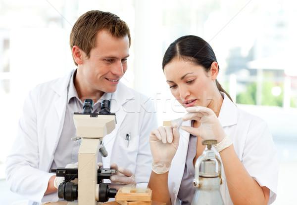 Cientistas estudar deslizar microscópio jovem homem Foto stock © wavebreak_media