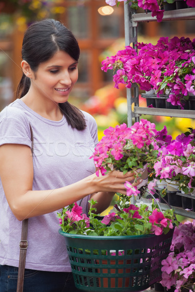 Woman choosing pink flower in garden center holding basket Stock photo © wavebreak_media