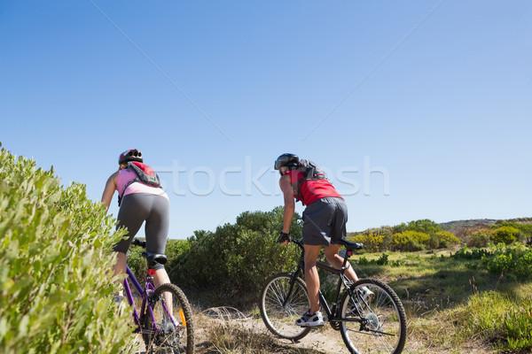 Aktywny para rowerowe kobieta Zdjęcia stock © wavebreak_media