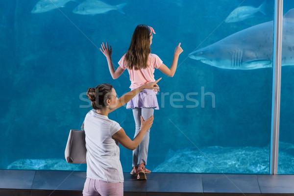 Szczęśliwą rodzinę patrząc ryb zbiornika akwarium dziecko Zdjęcia stock © wavebreak_media