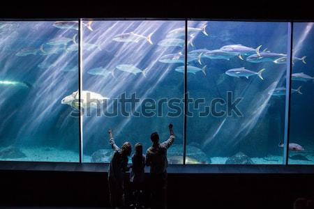 Gelukkig gezin naar vis tank aquarium liefde Stockfoto © wavebreak_media
