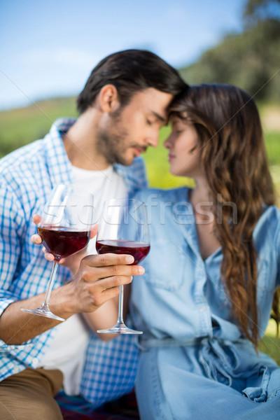 романтические очки виноградник Сток-фото © wavebreak_media