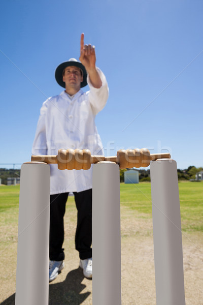 Umpire signalling six while standing behind stumps Stock photo © wavebreak_media
